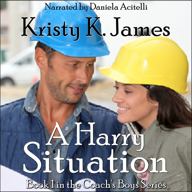 A Harry Situation, Audible Book